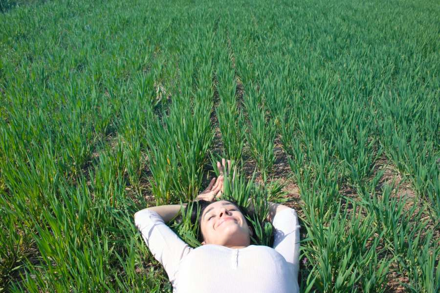 woman laying on field of green grass